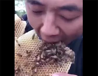 蜂の巣を食べる男性
