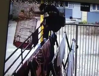 泥棒の犯行