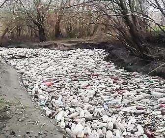 ペットボトルで汚染された川