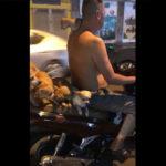 バイクに大量の子犬を乗せて走る