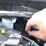車のエンジンルームから子猫を救出