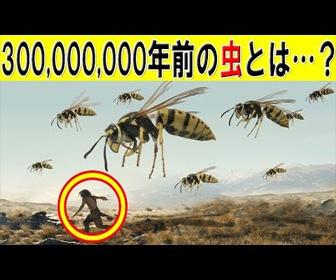 3億年前、地球上の虫はどんな姿だったのか