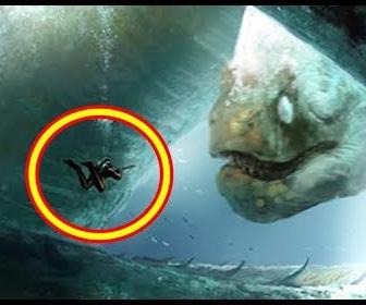 怖い…ダイバーが出くわした深海の巨大生物5選
