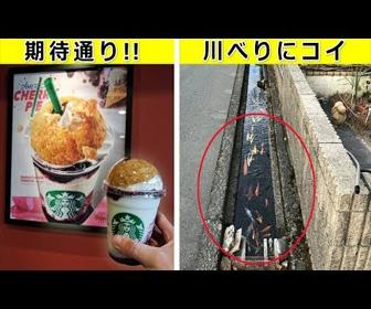「日本は違うなぁ」…海外で驚ろかれた写真
