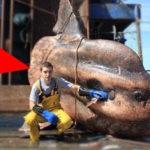 最も恐ろしい獲物を釣った漁師
