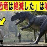 【動画】99%が信じている恐竜のウソ知識5選【衝撃】