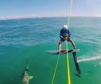 カイトサーフィンでサメに激突