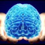 【動画】私たちが無意識のうちに脳が行っている現象