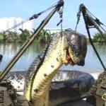 史上最大のヘビ