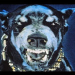 【動画】最も危険な犬種25種類